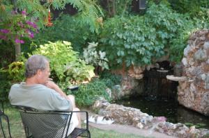 A Pond Ponderer